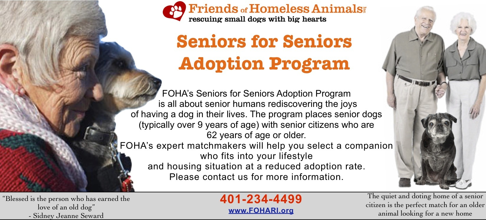 adopt a rescue dog 9 years or older. The Adoption Process still