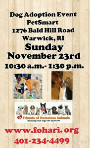 Be Thankful Adoption Event @ Petsmart | Warwick | Rhode Island | United States