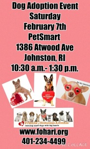 Have a Heart Adoption Event @ Petsmart | Johnston | Rhode Island | United States