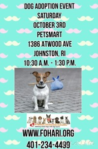 Fall Adoption Event @ Petsmart | Johnston | Rhode Island | United States