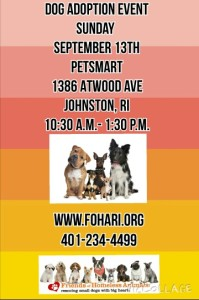 End of Summer Adoption Event @ Petsmart | Johnston | Rhode Island | United States