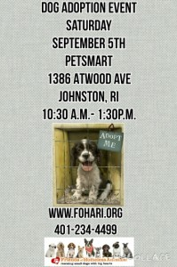 Bark to School Adoption Event @ Petsmart | Johnston | Rhode Island | United States