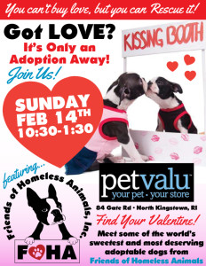 Find True Love Adoption Event @ Pet Valu | Rhode Island | United States