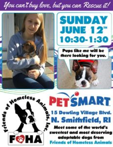 Summer is Here! Adoption Event @ Petsmart | North Smithfield | Rhode Island | United States