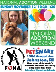 Celebrate Adoption event!! @ Petsmart | Johnston | Rhode Island | United States