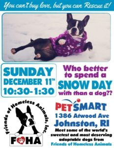 Home for the Howlidays adoption event @ Petsmart | Johnston | Rhode Island | United States