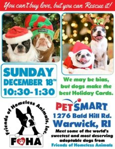 Give the Gift of a Forever Home adoption event @ Petsmart | Warwick | Rhode Island | United States
