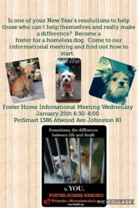 Foster Home Informational Meeting @ Petsmart | Johnston | Rhode Island | United States