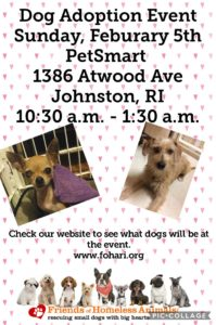 Frosty Paws Adoption Event @ Petsmart | Johnston | Rhode Island | United States
