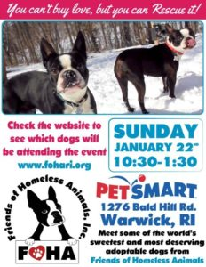 Winter Warm-Pup Adoption Event @ Petsmart | Warwick | Rhode Island | United States