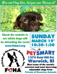 Kiss Me I'm Adoptable Adoption Event @ Petsmart | Warwick | Rhode Island | United States