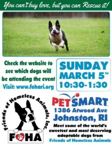 Friends Fur-ever Adoption Event @ Petsmart | Johnston | Rhode Island | United States