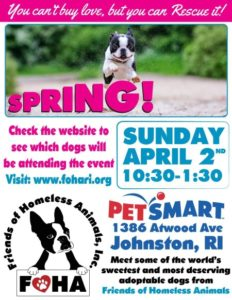 Spring Showers Adoption Event @ Petsmart | Johnston | Rhode Island | United States