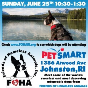 Pawsome Pups Adoption Event @ Petsmart | Johnston | Rhode Island | United States