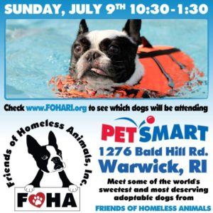 Summer Breezes Adoption Event @ Petsmart | Warwick | Rhode Island | United States