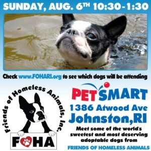 Dog Days of Summer Adoption Event @ Petsmart | Johnston | Rhode Island | United States