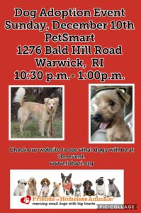 Happy Howl-aday Adoption Event @ Petsmart | Warwick | Rhode Island | United States