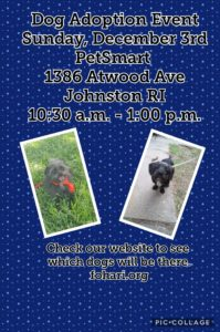 Paw-some Pups Adoption Event @ Petsmart | Johnston | Rhode Island | United States