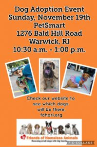 Thankful Paws Adoption Event @ Petsmart | Warwick | Rhode Island | United States