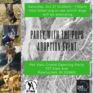 Party With the Pups Adoption Event @ Pet Valu - Pawtucket RI | Pawtucket | Rhode Island | United States