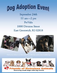 Welcome Fall Adoption Event @ Pet Valu | Nashville | Tennessee | United States