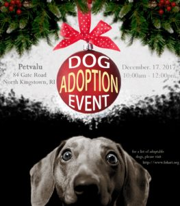 Home for the Holidays Adoption Event @ Pet Valu | North Kingstown | Rhode Island | United States