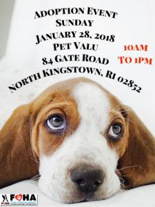 Warm Hearts Adoption Event @ Pet Valu | North Kingstown | Rhode Island | United States