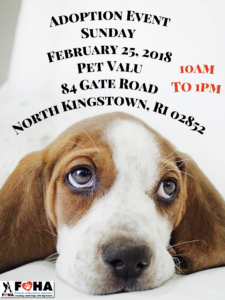 Find a Friend Adoption Event @ Pet Valu | North Kingstown | Rhode Island | United States